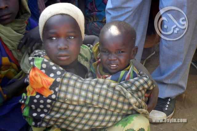 إستفتاء دارفور