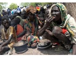 نذر مجاعة  تهدد ولايات دارفور والموطنون ياكلون ثمار