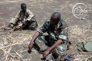 قادة النظام لا يثقون في الجيش