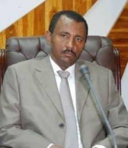 المعارضة السودانية: ضغط من المجتمع الدولي لخوض الانتخابات