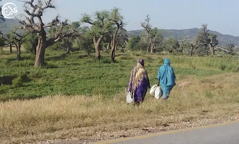 موجة نزوح جديدة بدارفور أثر اعتداءات الرعاة على المزارعين