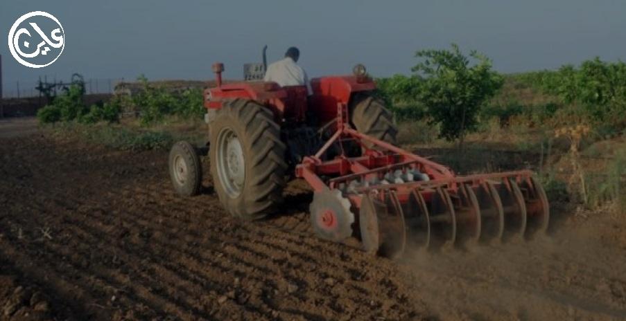 الفشل يتهدد موسم زراعة القمح بمشروع الجزيرة