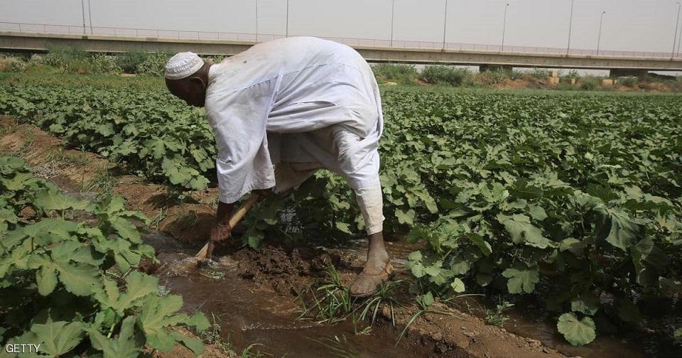 توقف ري مشروع زراعي شمالي السودان والأهالي يهددون بإغلاق طريق قومي