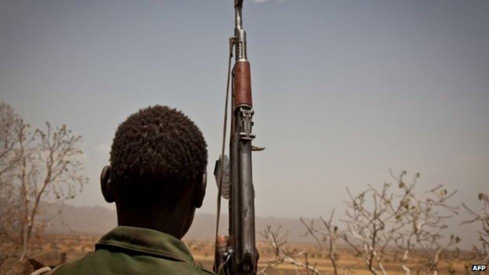 السلاح في دارفور